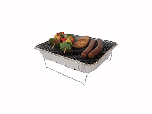 Bbq Sale Charcoal Gas Amp Portable Bbqs Reviews Tips